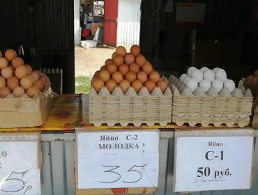 Сельхозярмарка на Вокзальной: товары на любой кошелёк!